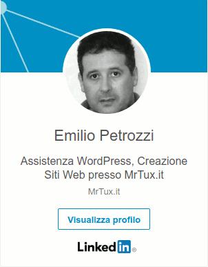 emilio petrozzi assistenza wordpress